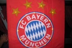 DFB Pokal Finale Mai12