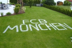 FCB - VFB Mai09